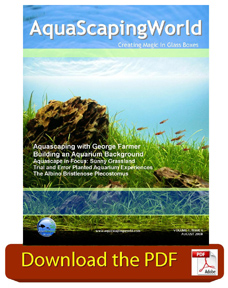 AquaScaping World Magazine August 2008