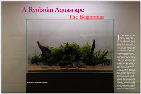 A Ryoboku Aquascape: The Beginnings