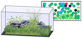 aquasketcher
