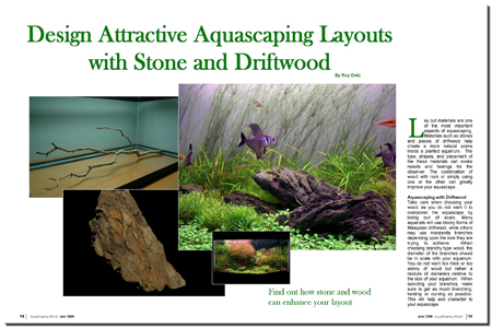 Design Aquascaping Layouts With Stone And Driftwood