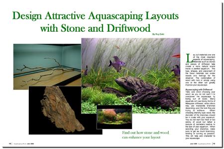 Aquascape Layout : AquaScaping World Magazine - Design Attractive Aquascaping Layouts ...