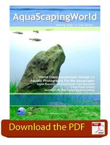 AquaScaping World Magazine June 2008