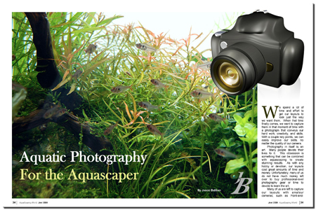 Aquatic Photography for the Aquascaper