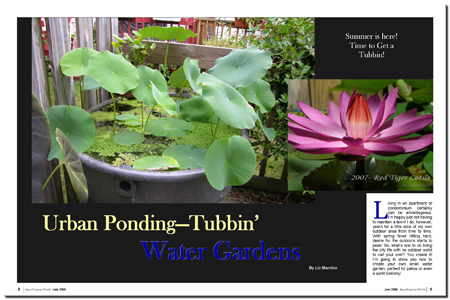 Urban Pond-Tubbin' Water Gardens