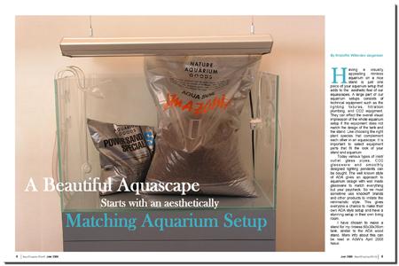 Aesthically Matching Aquarium Setup