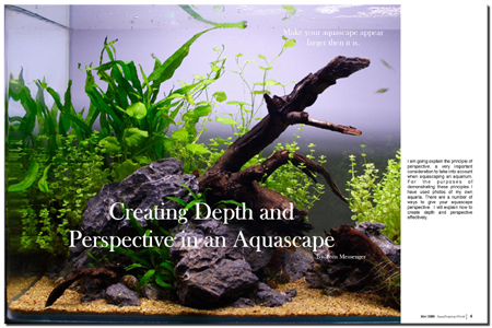 AquaScaping World Magazine - Creating Depth and Perspectve ...