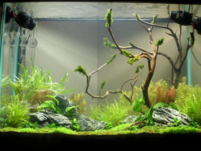 37 Gallon High Tech