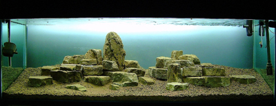 Rock Aquascape