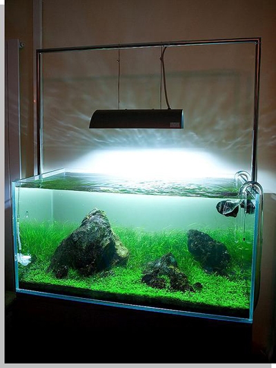 Aquascape UK