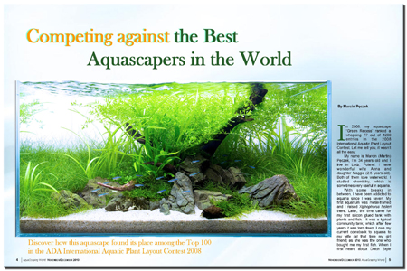 Competing with the Best Aquascapers