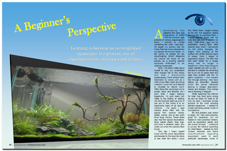 Aquascaping World Magazine A Beginner S Perspective