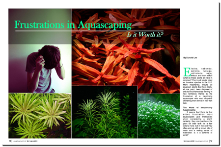 Frustrations in Aquascaping