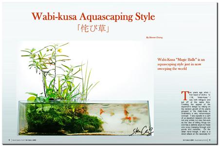 Wabi-Kusa Aquascaping Style